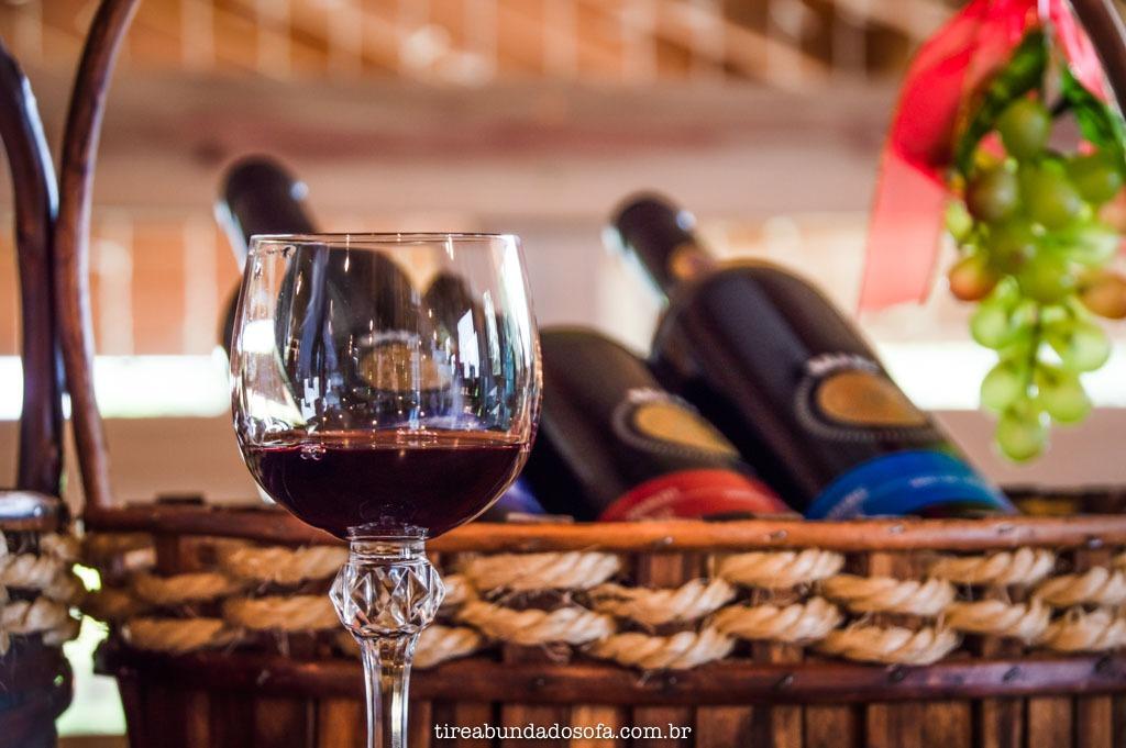 degustação de vinhos na vinícola Kranz, em Treze Tílias, Santa Catarina