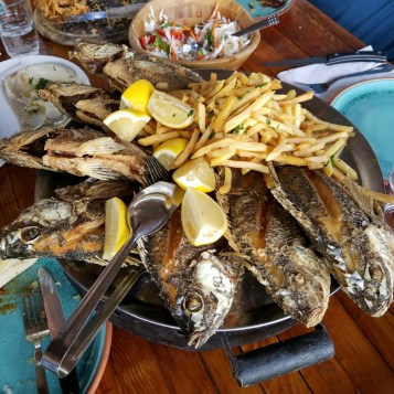 St Peter's fish, talipia, the most common fish in the Sea of Galilee
