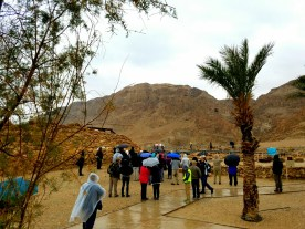 Our first view of the limestone cliffs at Qumran.