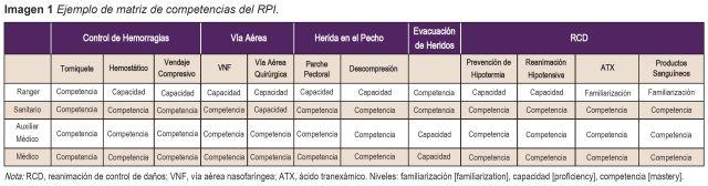 Imagen 1 Ejemplo de matriz de competencias del RPI