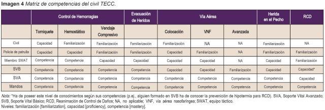 Imagen 4 Matriz de competencias del civil TECC