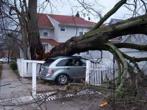 wind damage insurance claims