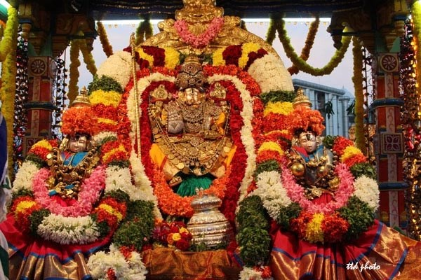 float festival at srigovindaraja swamy temple
