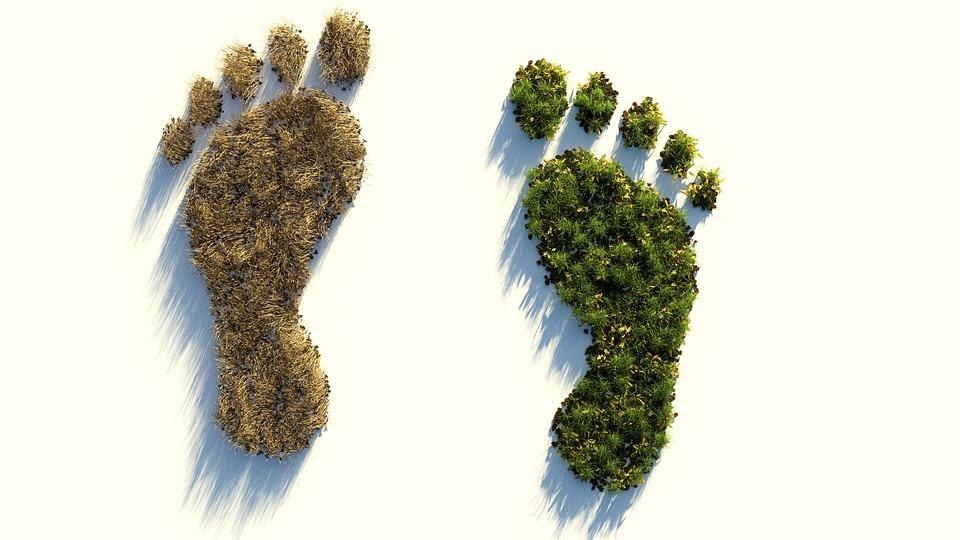 Unser Fußabdruck für den Klimawandel…