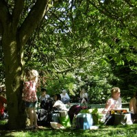 Much Wenlock's Jo Cox Great Get Together Picnic