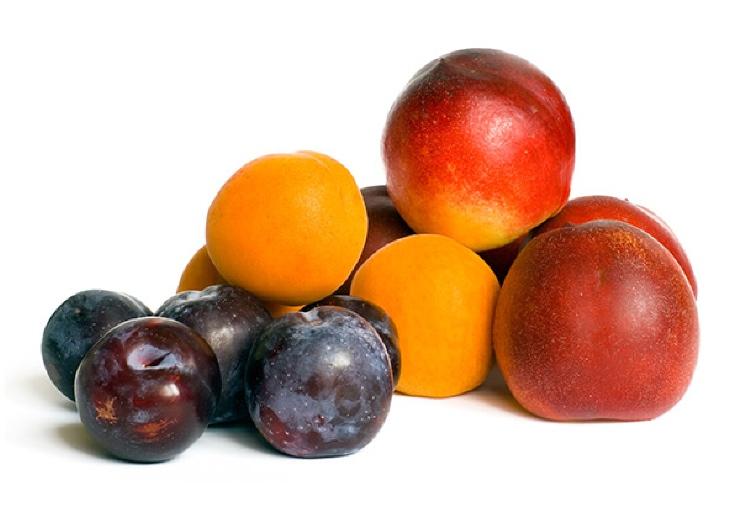 plums, apricots