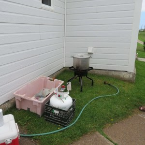 Setup to cook lobsters