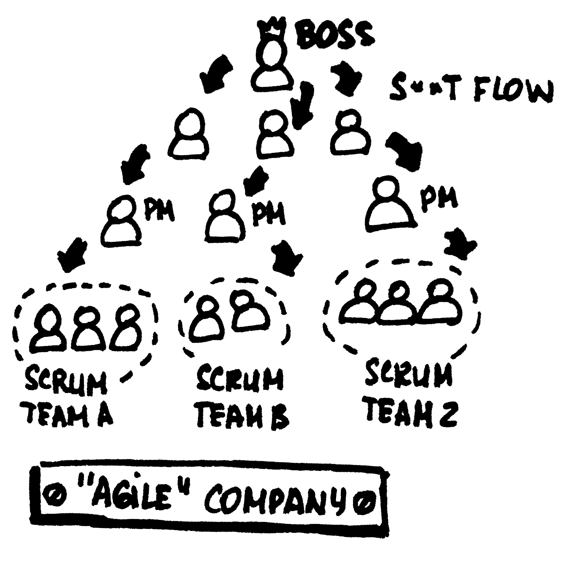 WTF Project Manager is doing in Scrum team?