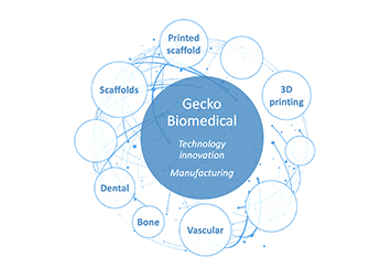 GECKO BIOMEDICAL MANUFACTURING