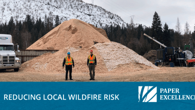, Paper Excellence working to reduce local wildfire risk