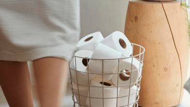 , Northern wood excites kitchen and toilet paper maker Metsä Tissue