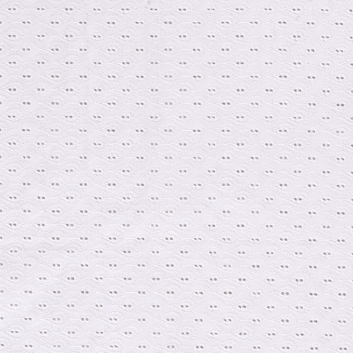 Coton brodé paysley blanc