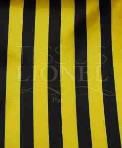 carnaval rayures abeille