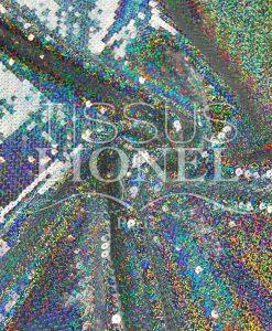 glittery zilver hologram hologram VS