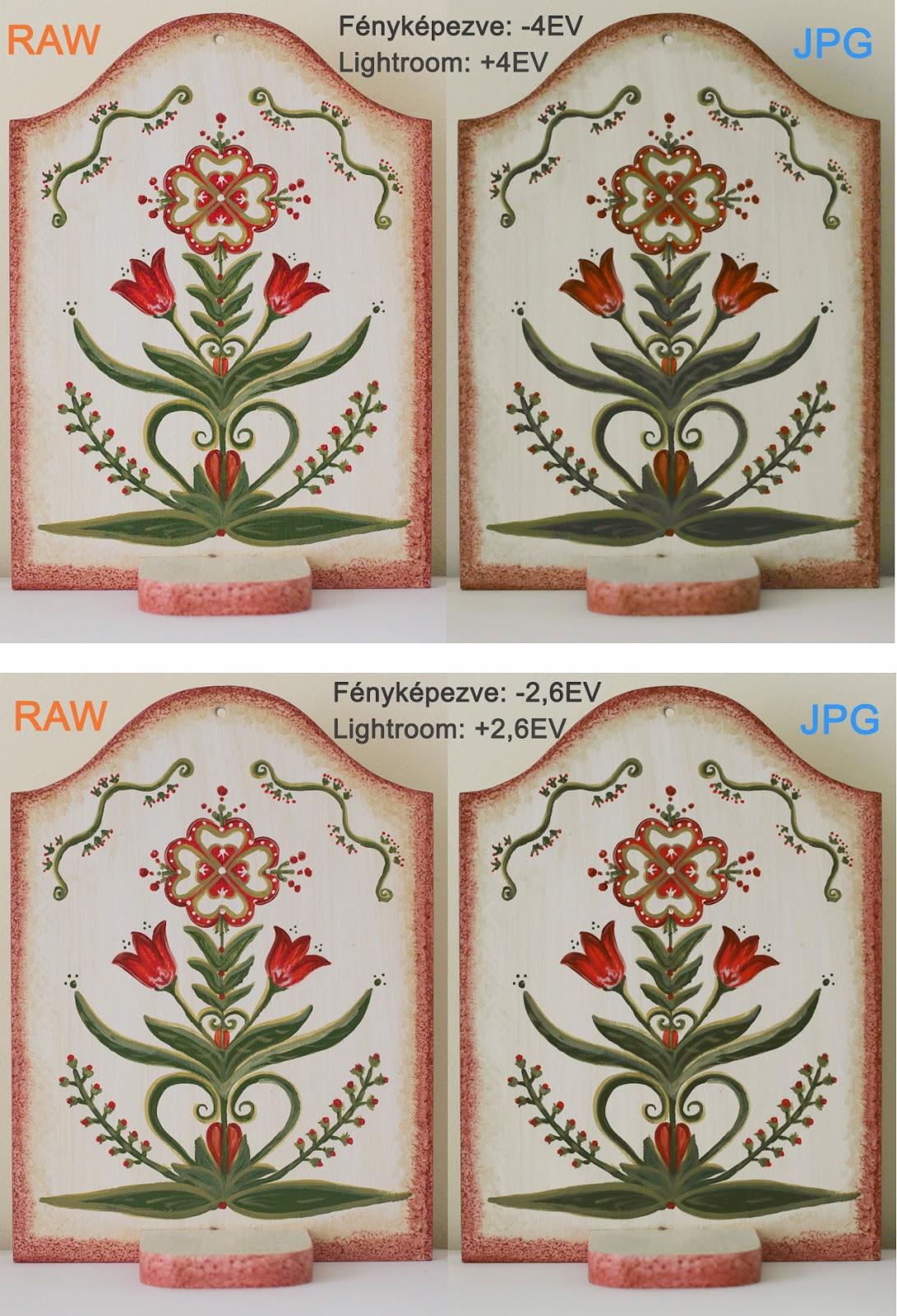 raw-vagy-jpg-expo-komp-tulipán-alsó-ujra