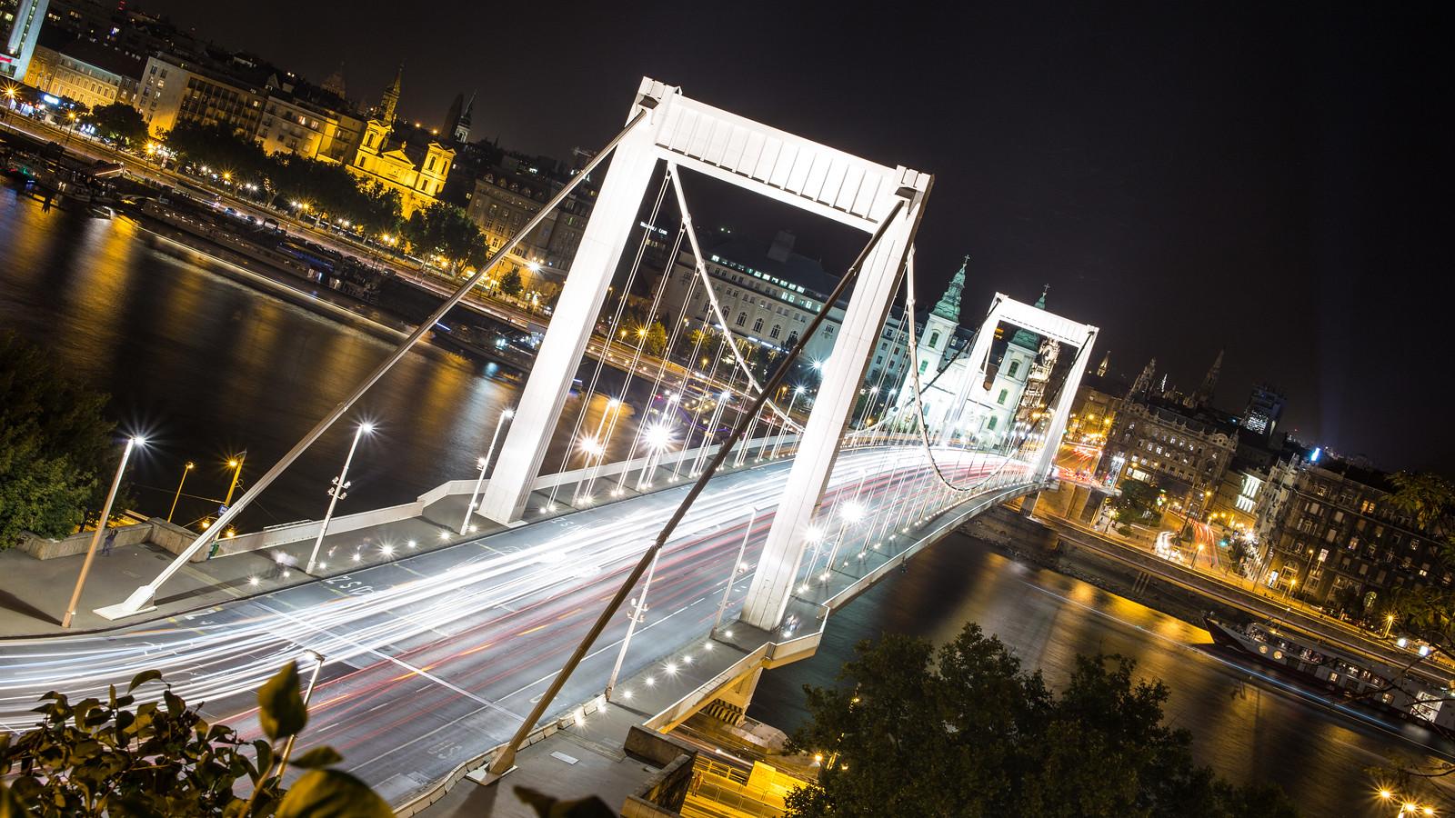 Elisabeth bridge in Budapest at night
