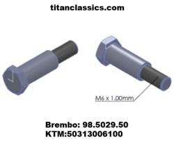 Brembo TITANIUM lever pin