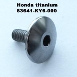 TITANIUM 83641-KY6