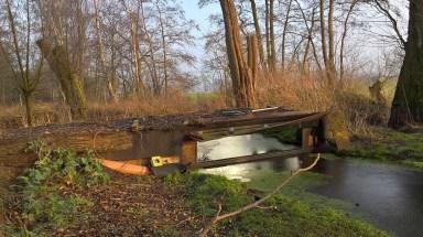 Hut 1 : Luik zoetwatermoeras