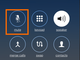 Mute button during conference call