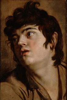 Cabeza de un joven - Peter Paul Rubens