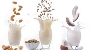 Nut and soya milks Title Sussex Magazine www.titlesussex.co.uk