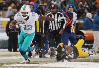 sfl-things-we-learned-dolphins-steelers-201312-011