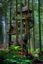 Three Story Treehouse (British Columbia, Canada) Why have a single-story tree house, if you can have three? This one is said to be the tallest tree house in British Columbia, Canada. You can find it somewhere near Revelstoke. (Image credits: imgur.com)