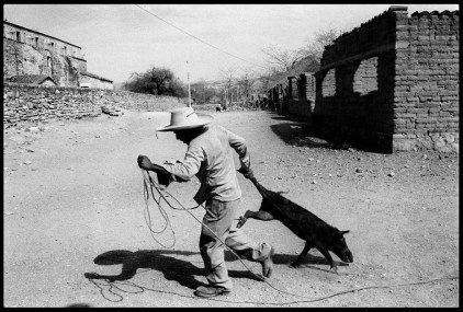 MEXICO. State of Guerrero. Village of San Augustin de Oapan. 1983. A man drags a reluctant pig in midday.