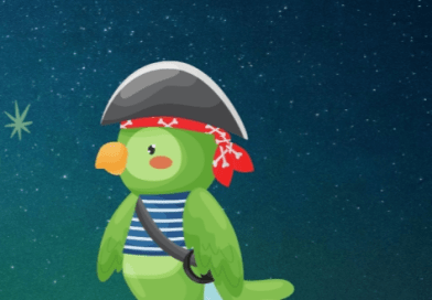 parrot dressed as a pirate