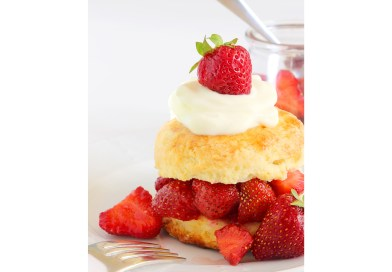 Strawberry Social at Union Library