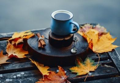 Gratitude Tea @ Union
