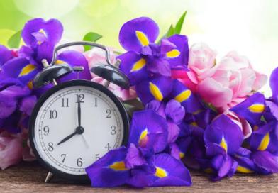 flowers a clock spring ahead