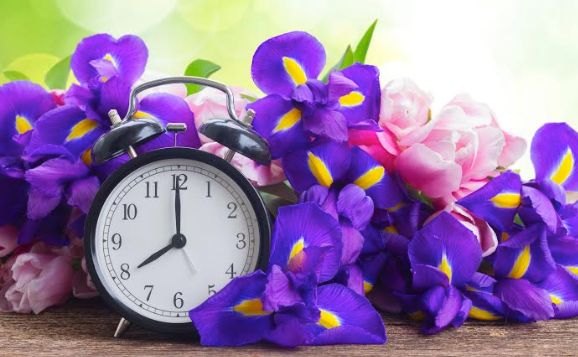 flowers a clock spring ahead