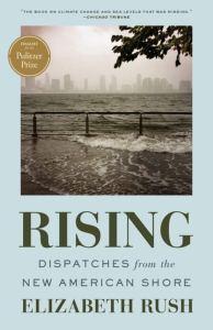 rising book cover tide city