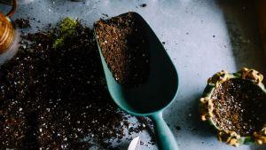 soil shovel pots