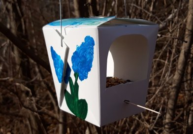 take out box made into a bird feeder. the box is painted with flowers on the outside. hanging in the woods.
