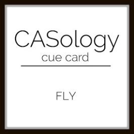 caso 255 - Fly