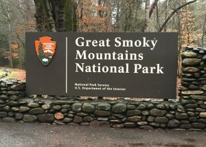 Smoky-Mtn-Forest-Photo-Credit--Kevin-Faragher