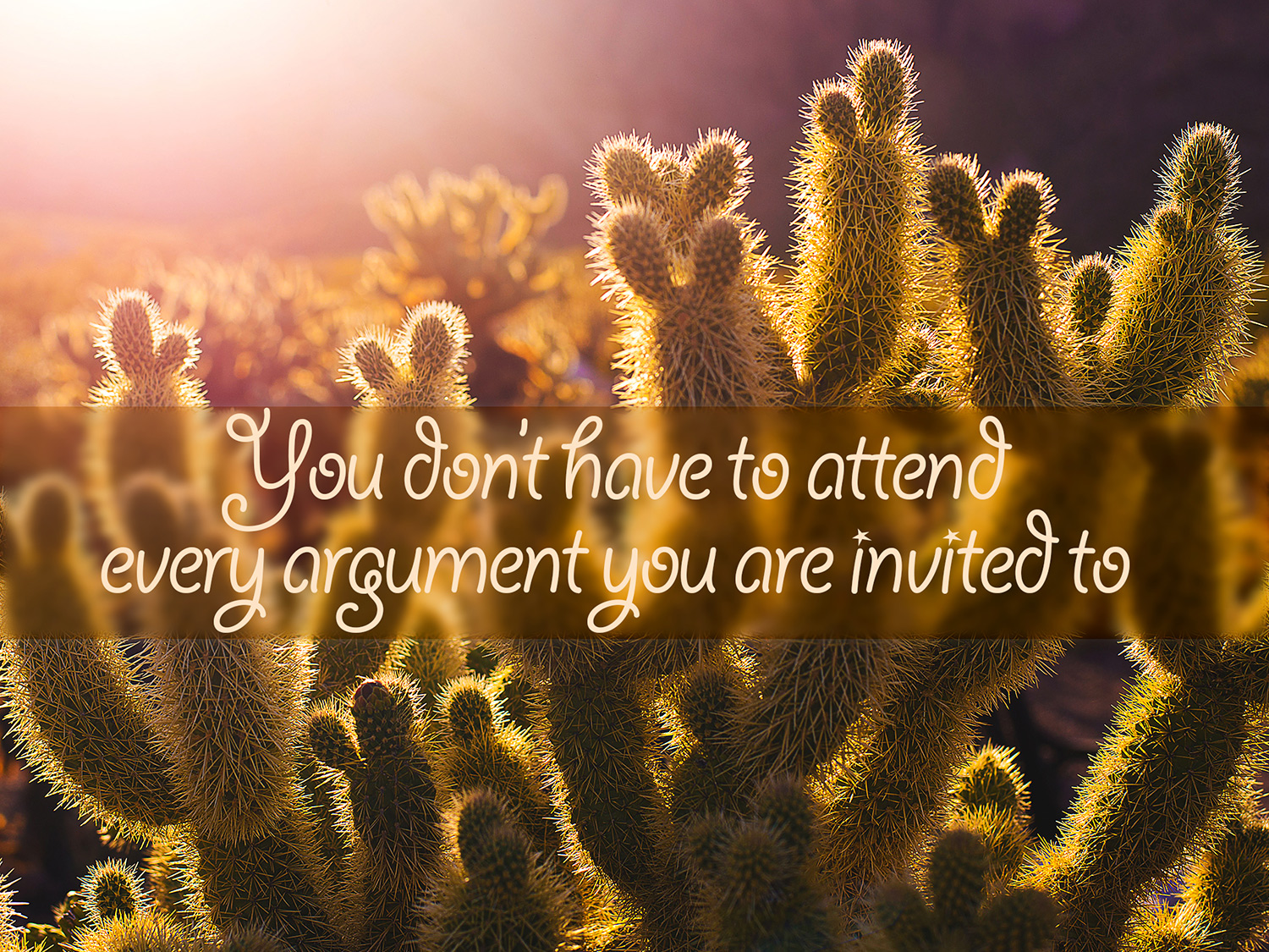 daily inspirational quote image: cacti in the early morning