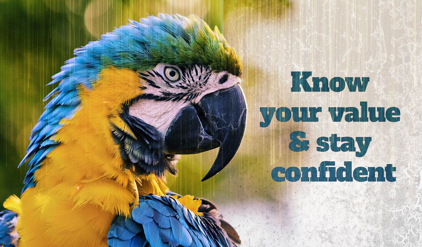 daily inspirational quote image: close up on a colorful yellow and blue parrot