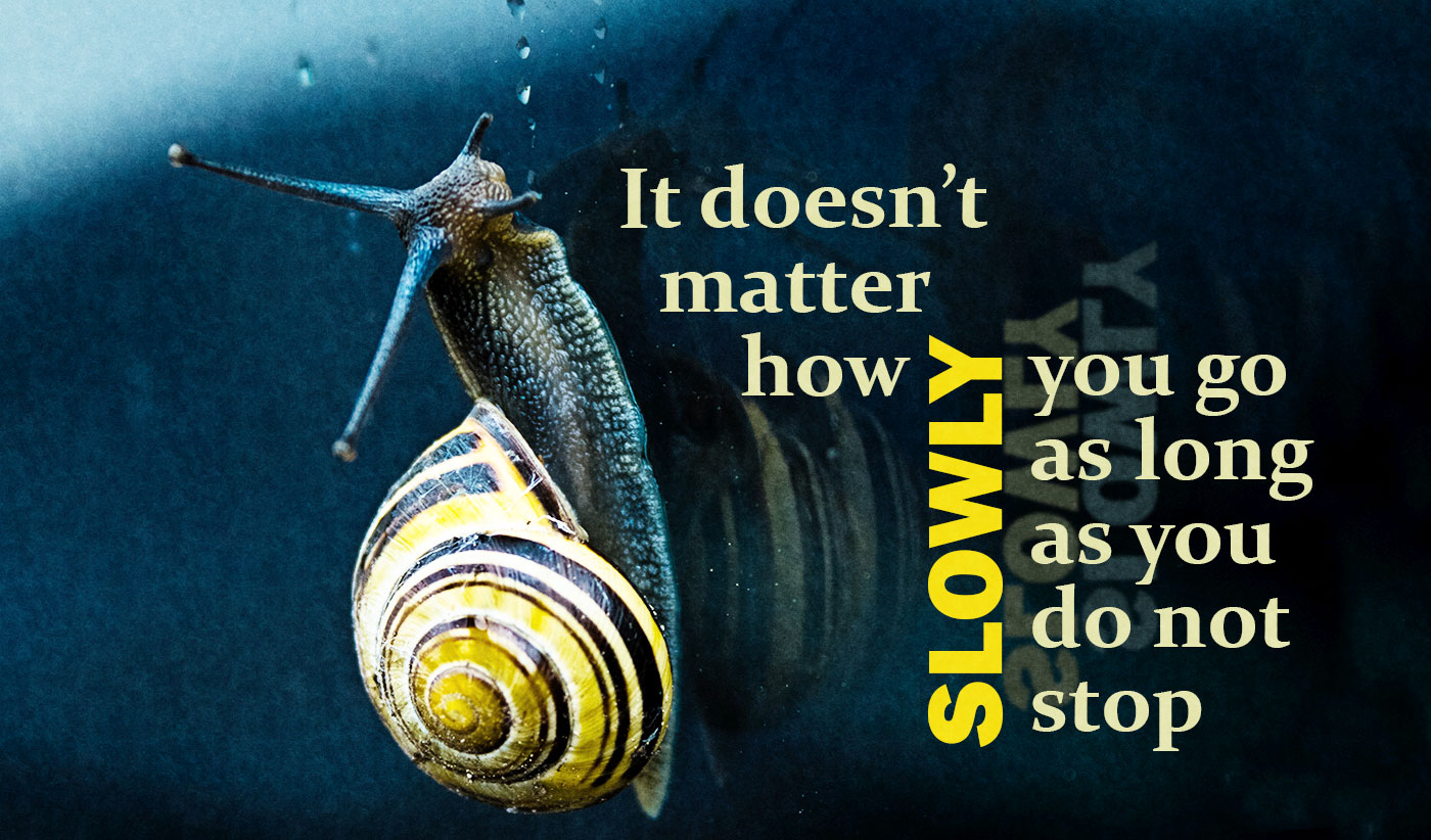 daily inspirational quote image: a snail climbing a window
