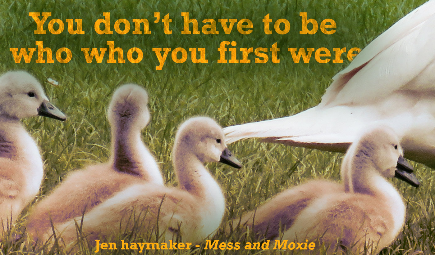 daily inspirational quote image: a few swan ducklings in a grassy field with mom