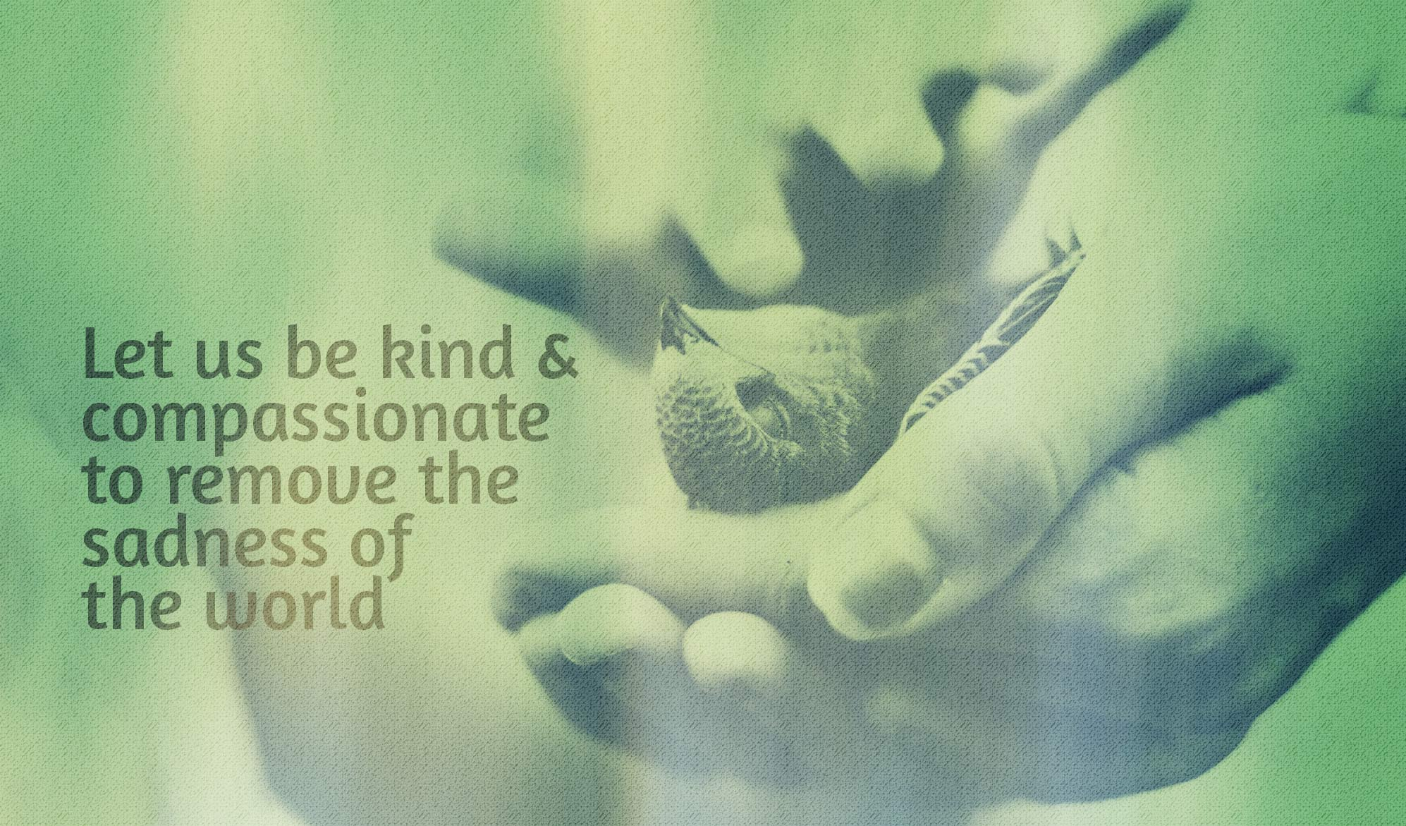 daily inspirational quote image:hands holding a dead bird, in a green yellow light