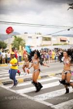 tj876 Jamaica Carnival Road March 2013-119