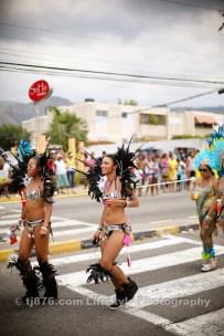 tj876 Jamaica Carnival Road March 2013-120