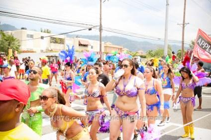 tj876 Jamaica Carnival Road March 2013-20