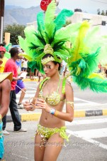 tj876 Jamaica Carnival Road March 2013-24
