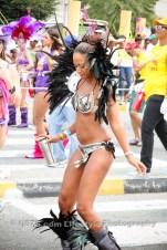 tj876 Jamaica Carnival Road March 2013-31