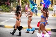 tj876 Jamaica Carnival Road March 2013-49